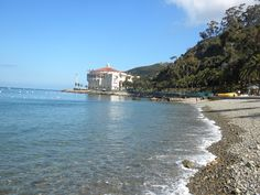 my picture from Catalina Island!