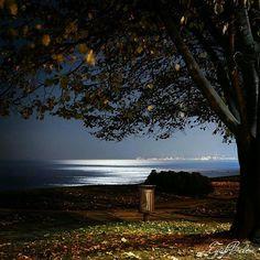 """""""Ordu sahilde mehtaplı bir gece... photo@eyupbelen  #ordu #sahil #karadeniz #blacksea #turkey #memleketordu #travel #aniyakala"""""""