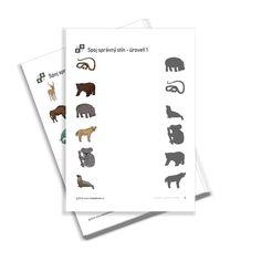 KiddyBlocks | Spoj správný stín 1 - zvířátka v zoo Zoo, Free Printables, Preschool, Playing Cards, Free Printable, Kid Garden, Playing Card Games, Kindergarten, Game Cards