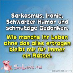Sarkasmus-und-Ironie     http://saulustig.com