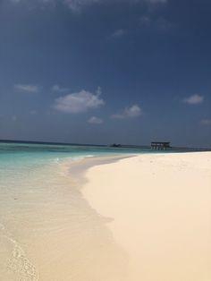 Azure Waters in the Maldives Blog Post: Park Hyatt Maldives Hadahaa   Spa Time   PetiteJilly.com Snorkelling, Visual Diary, Maldives, Beautiful Homes, Paradise, Spa, Island, Beach, Water