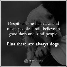 I put more faith into dogs