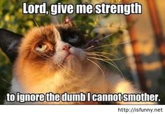 Funny grumpy cat lord give me strenght isfunny.net