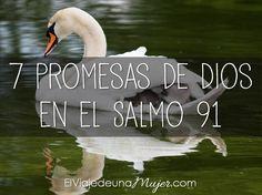 7 promesas de Dios en el Salmo 91 | El viaje de una mujer