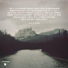 """""""Fui a los bosques porque quería vivir deliberadamente; enfrentarme solo a los hechos esenciales de la vida y ver si era capaz de aprender lo que ella tenía que enseñar... quería vivir profundamente y extraer de ello todo su jugo, para no darme cuenta en el momento de morir, que no había vivido."""" Henry David Thoreau"""