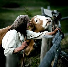 Strong connection with our animals. What Dreams May Come, Transylvania Romania, Native Country, City People, Magic Forest, Timeless Beauty, Cute Photos, Country Life, Alter