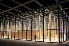 Freitag, 14.11., 23:00 Uhr – Mitte, Potsdamer Straße: Die Bäume von David Chipperfield in der Neuen Nationalgalerie. © Paula Faraco