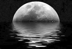 Il suo sperma bevuto dalle mie labbra era la comunione con la terra. Bevevo con la mia magnifica esultanza guardando i suoi occhi neri che fuggivano come gazzelle. E mai coltre fu più calda e lontana e mai fu più feroce il piacere dentro la carne. Ci spezzavamo in due come il timone di una nave che si era aperta per un lungo viaggio. Avevamo con noi i viveri per molti anni ancora i baci e le speranze e non credevamo più in Dio perché eravamo felici.  Alda Merini --