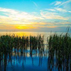 Key Vista Nature Park #florida #sunset #sunset_madness #beauty #nature #natural #outdoors #beach #sky #landscape by amper2411