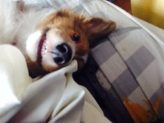 Smiling selfie #SelfieSunday :)