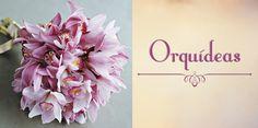 Design e Moda: Top 10: Flores mais usadas em decoração de casamento!