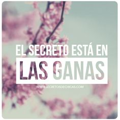 El secreto está en las ganas