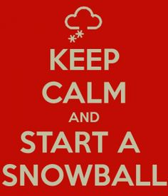 Keep calm and Start A Snowball. visit www.startasnowball.org to apply for a grant to fund your kid's community service project.