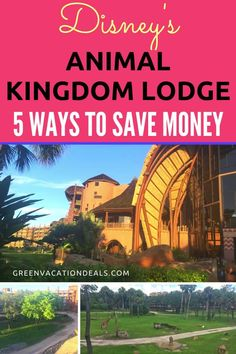 Animal Kingdom Lodge hacks for saving money on your next Disney World trip! Are you planning a stay at Disney's Animal Kingdom Lodge? This beautiful deluxe resort has 2 amazing sections (Kidani Village Best Family Vacations, Family Vacation Destinations, Vacation Deals, Dream Vacations, Disney Resorts, Disney Vacations, Disney Trips, Kidani Village, Disney Animal Kingdom Lodge