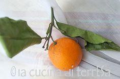 orange Valencia—arancio Valencia #seasonalharvest #springharvest #seasonal #fruits #vegetables #spring #harvest #springvegetables #seasonalvegetables