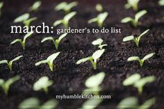 March Gardener's To Do List | myhumblekitchen.com