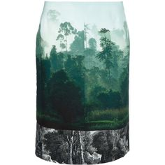 DRIES VAN NOTEN 'Saim' skirt (20.380 RUB) ❤ liked on Polyvore featuring skirts, bottoms, saias, юбки, patterned skirts, high-waisted skirts, green silk skirt, green high waisted skirt and high-waist skirt