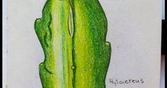 Asparagus, Vegetables, Cactus, Studs, Vegetable Recipes, Veggies