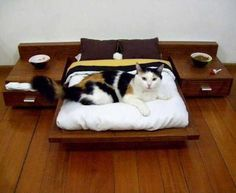 33 Modern Cat and Dog Beds, Creative Pet Furniture Design Ideas this is awesome! If I did this my cat would still prefer my head. Lol