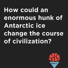Antarctica, Falling Down, The Borrowers, Tweety, Ocean, Graphics, Funny, Instagram, Graphic Design