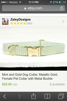 Cute dog color