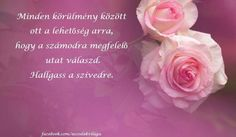 Ildikó Motivating Quotes, Motivation, Love, Flowers, Amor, Quotes Motivation, Royal Icing Flowers, Flower, Florals