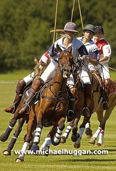 Polo Match - Image by Michael Huggan