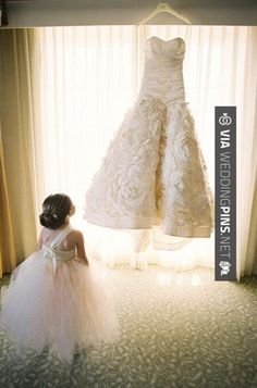 So good - Flower girl in total awe Photography by:  / Wedding Dress by: | CHECK OUT MORE GREAT FLOWER GIRL AND RING BEARER PHOTOS AND IDEAS AT WEDDINGPINS.NET | #weddings #wedding #flowergirl #flowergirls #rings #weddingring #ringbearer #ringbearers #weddingphotographer #bachelorparty #events #forweddings #fairytalewedding #fairytaleweddings #romance