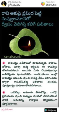 Hindu Quotes, Telugu Inspirational Quotes, Spiritual Quotes, Devotional Topics, Devotional Quotes, Vedic Mantras, Hindu Mantras, Hindu Vedas, Bhakti Song