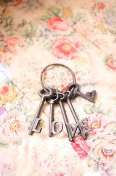118 Best Key To My Images Old Keys Key To My Heart Antique Keys