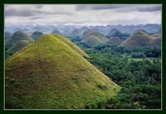 The Chocolate Hills in The Philippines. Some of the craziest looking topography I've ever seen. Life Is An Adventure, Greatest Adventure, Chocolate Hills, Bohol, Tourist Spots, Field Guide, Our World, Philippines, Island
