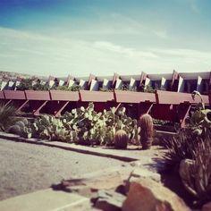 The grand pergola walkway at #TaliesinWest #FrankLloydWright #WrightSites #Architecture #Design #Nature #OrganicArchitecture #Masonry #Phoenix #Scottsdale #Desert