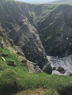 Shetland Day 4- Hermaness National Nature Reserve