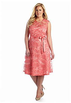 Adrianna Papell Plus Size Lace Fit and Flare Dress | All Dressed ...