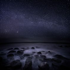 Mikko Lagerstedt photo - visit his homepage and take a look! www.mikkolagerstedt.com