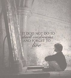 It does not do to dwell on dreams and forget to live. Harry Potter and the Sorcerer's Stone - Quote by Albus Dumbledore - Google Search