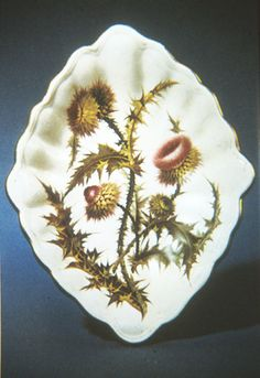 True porcelain was first made at Derby in 1748 under the direction of the modeller   Andrew Planché and much of the early production clearly mimicked Chelsea products. By 1770, the owners of Derby would actually purchase the Chelsea factory. Like Chelsea, Derby would produce work with botanical illustrations. This diamond shaped plate was painted by William Pegg. Pegg was known as the greatest of all the botanical illustrators and worked not from prints or engravings, but from life.