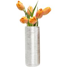 Dot & Bo Nova Tube Vase - Silver ($27) ❤ liked on Polyvore featuring home, home decor, vases, decor, modern home accessories, metallic vase, silver home decor, tube vase and modern home decor