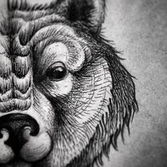 Bear tattoo sketch fragment #bear #bearhead #tattoo #sketch #tattoosketch #flach #instagood #instaart #artist #art #illustration #gravure #woodcut #dotwork #linework #animal #myfresh #amazingink #aurorazlova #artist #artist_of_instagram