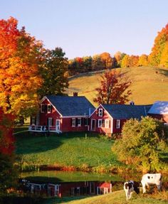 Best Farm Landscape Photography Country Living Fall 45 Ideas - Image 20 of 21 Country Farm, Country Life, Country Living, Beautiful Buildings, Beautiful Landscapes, Beautiful Places, Autumn Photography, Landscape Photography, Night Photography