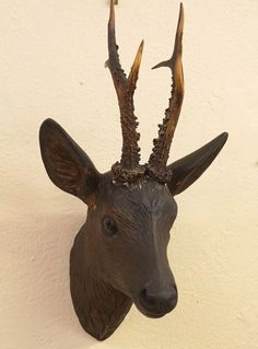 c2ab231f373d6 Details about Antique German Black Forest Carved Wood Deer Head Shield  Mount Glass Eyes