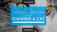 5 Ways Content Marketing is Like Owning a Cat