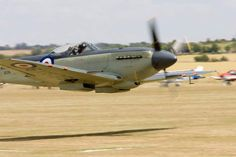 Vintage Aircraft Supermarine Seafire makes a low pass. During WWII sometimes pilots on these low flying raids would come back with vegetation on the plane. Ww2 Aircraft, Fighter Aircraft, Fighter Jets, Aircraft Images, Military Jets, Military Aircraft, Military Helicopter, Spitfire Supermarine, Drones