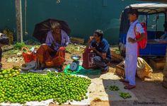 Fish market chatter in Negombo Sri Lanka #srilanka #markets #travel #travelphotography