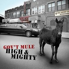 Gov't Mule : High & Mighty CD
