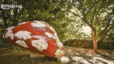 Efteling achtergrond van een paddenstoel in het Sprookjesbos