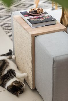 DIY – cat scratching table: coffee table and scratching furniture at the same time – Leelah Loves - Katzen