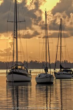 Anchored Sailboats Three sailboats anchored quietly off Dinner Key Marina in Coconut Grove, Florida Pictures To Paint, Nature Pictures, Cool Pictures, Sailboat Painting, Old Boats, Love Boat, Water Reflections, Seascape Paintings, Beach Scenes