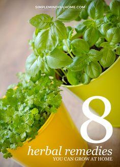 8 herbal remedies yo