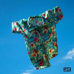 Camisa Samambaia